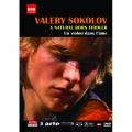 天生小提琴家-索可洛夫