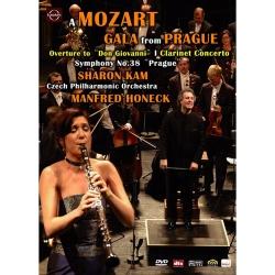 莫札特紀念音樂會III-洪納傑克指揮