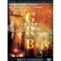 災難顯像館--森林大火