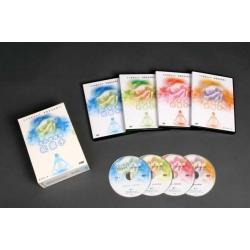 公視能量手套裝(4片DVD 裝)